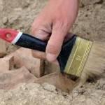 «Черные археологи» теперь могут попасть под статью УК