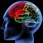 Новое исследование мозга: плацдарм для манипуляций или медицинское новшество